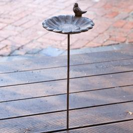 Vogeltränke Finch