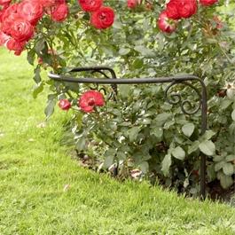 Rosenstütze Cunfin