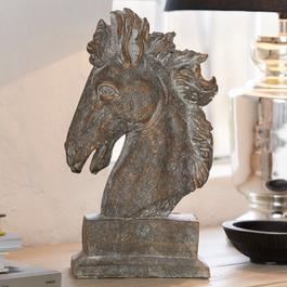 Pferdekopf Jovis