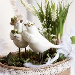 Vogelpaar Orne